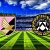 Voci di mercato . Palermo-Udinese 1-1