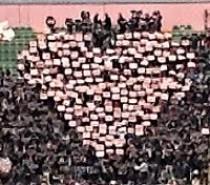 Palermo -Verona ore 21.00. La voce dei tifosi (VIDEO)
