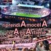 Palermo- Padova ore 21.00 le voci dei tifosi per una vittoria (VIDEO)