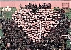 cuore-rosanero